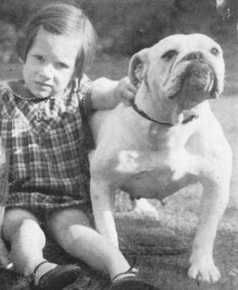 Olde English Bulldogges History - History of the Olde English ...